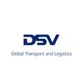 DSV en France logo